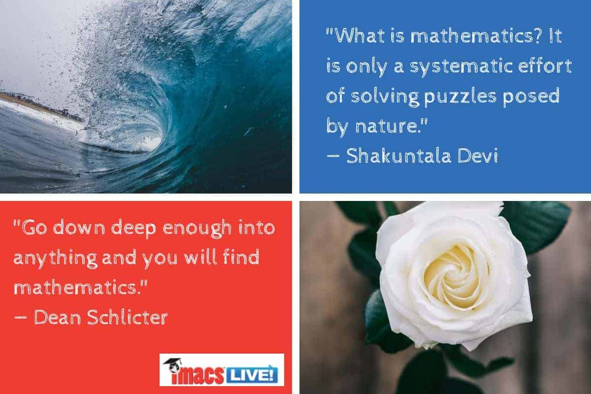 Quotes by Dean Schlicter and Shakuntula Devi. The beauty of math can be seen in flowers and waves.